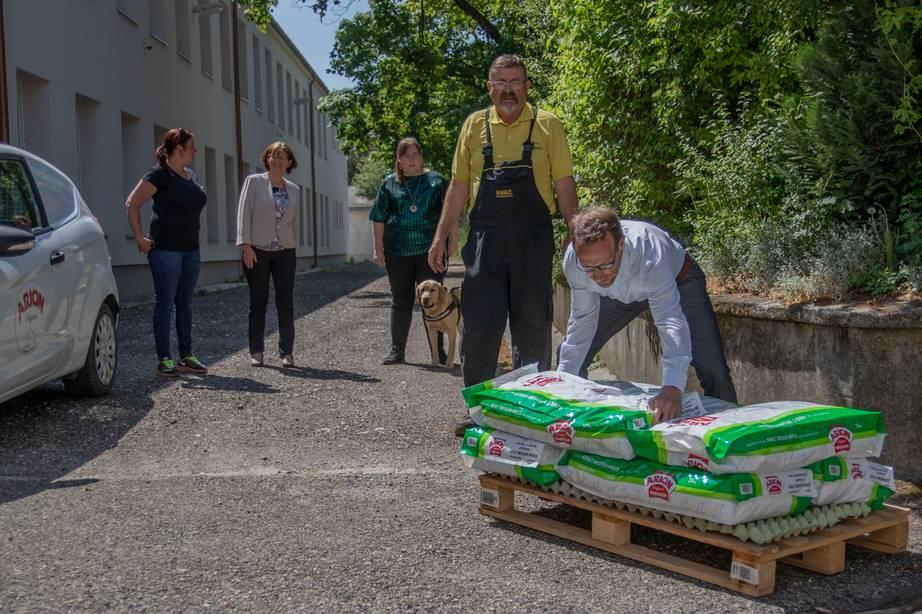 Vakvezető kutyák világnapja jótékonysággal megspékelve